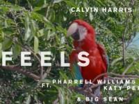Escucha 'Feels', la nueva canción de Calvin Harris con Pharrell, Katy Perry y Big Sean